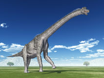 Dinosaurier Brachiosaurus stock abbildung