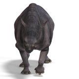 Dinosaurier Brontotherium Lizenzfreie Stockbilder