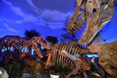 Dinosaurier Exibit Lizenzfreies Stockbild