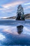 Dinosaurier-Felsen-Strand in Island Lizenzfreie Stockfotografie