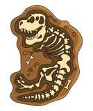 Dinosaurier-Fossil Lizenzfreie Stockfotografie