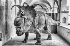 Dinosaurier gekennzeichnet in einer Ausstellung gehalten in Gubbio, Italien lizenzfreie stockfotos