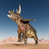 Dinosaurier Pentaceratops in der Wüste lizenzfreie abbildung