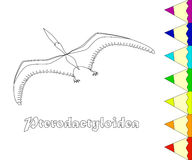 Dinosaurier, Pterodactyloidea, Färbungsseite Stockbild