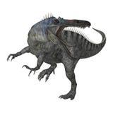 Dinosaurier Suchomimus der Wiedergabe-3D auf Weiß Stockfotografie