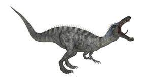 Dinosaurier Suchomimus der Wiedergabe-3D auf Weiß Lizenzfreie Stockfotos