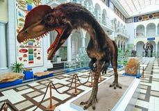 Dinosaurier in Warschau stockfotos