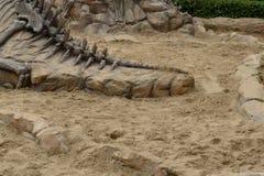 Dinosaurierfossilien simuliert im Sand Lizenzfreie Stockfotos