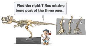 Dinosaurieskelettlek royaltyfri illustrationer