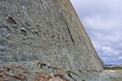 Dinosauriespår på väggen av Cal Orko, Sucre, Bolivia Arkivfoto