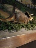 Dinosaurieutställning arkivbild