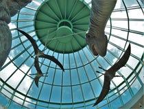 Dinosaurieutställning i norr Carolina Museum av naturvetenskaper arkivbilder