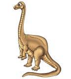 dinosaurillustration Arkivfoton
