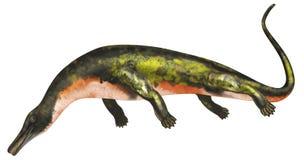 Dinosaurio acuático de Askeptosaurus stock de ilustración