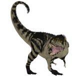 Dinosaurio blanco negro de T-Rex Imagenes de archivo