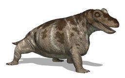 Dinosaurio de Keratocephalus ilustración del vector