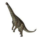 Dinosaurio de Spinophorosaurus que se levanta - 3D rinden Imagen de archivo libre de regalías