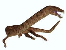 Dinosaurio de Tanystropheus en blanco Foto de archivo libre de regalías