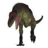 Dinosaurio de Tyrannotitan en blanco Imagen de archivo libre de regalías