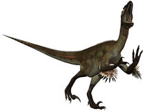 Dinosaurio de Utahraptor ostrommayorum-3D Imágenes de archivo libres de regalías