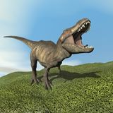 Dinosaurio del tiranosaurio - 3D rinden Fotografía de archivo libre de regalías
