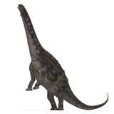 Dinosaurio Diamantinasaurus Imagenes de archivo
