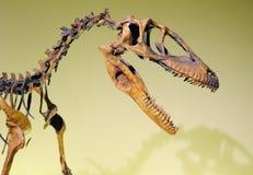 Dinosaurio jurásico imagen de archivo