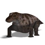Dinosaurio Keratocephalus Fotos de archivo