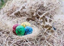 Dinosaurio y huevo fotos de archivo libres de regalías