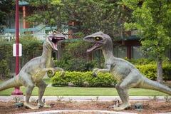 Dinosaurios del Velociraptor foto de archivo libre de regalías