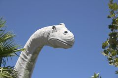 Dinosauro 5 fotografia stock libera da diritti