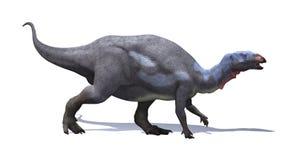 Dinosauro del Camptosaurus Immagini Stock Libere da Diritti