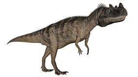 Dinosauro del Ceratosaurus - 3D rendono royalty illustrazione gratis