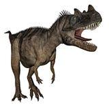 Dinosauro del Ceratosaurus - 3D rendono illustrazione vettoriale