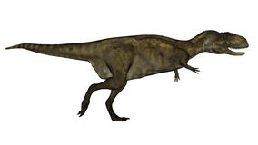 Dinosauro di Abelosaurus - 3D rendono Fotografie Stock Libere da Diritti
