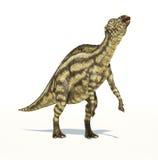 Dinosauro di Maiasaura, bambino piccolo, rappresentazione fotorealistica. royalty illustrazione gratis