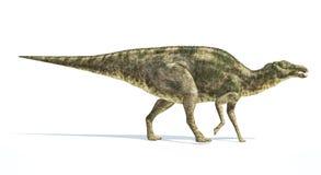 Dinosauro di Maiasaura, rappresentazione fotorealistica. Vista laterale. illustrazione vettoriale