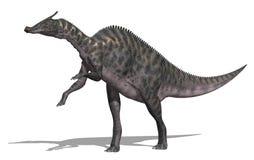 Dinosauro di Saurolophus royalty illustrazione gratis