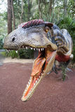 Dinosauro fragilis di allosauro Fotografia Stock Libera da Diritti