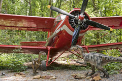 Dinosaurs and biplane. Two small dinosaurs and the red classic biplane in the forest Stock Photography