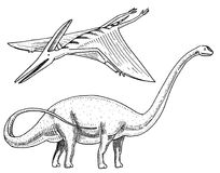 Dinosaur Brachiosaurus or sauropod, Plateosaurus, Diplodocus, Apatosaurus, Pterosaur, skeletons, fossils, winged lizard. Dinosaurs Brachiosaurus or sauropod Royalty Free Stock Photography