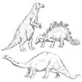 Dinosaurs set Stock Photos