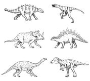Dinosaurs set, Triceratops, Barosaurus, broad lizard, Stegosaurus, Pachycephalosaurus, Diplodocus, Ankylosaurus. Velociraptor skeletons fossils Prehistoric Royalty Free Stock Images
