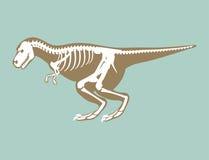 Dinosaurs skeleton silhouette bone tyrannosaurus prehistoric animal dino bone vector flat illustration. Stock Photography