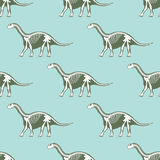 Dinosaurs skeletons silhouettes seamless pattern fossil bone  Stock Image