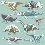 Dinosaurs skeletons silhouettes set fossil bone tyrannosaurus prehistoric animal dino bone vector flat illustration. Dinosaurs skeletons silhouettes set fossil Royalty Free Stock Photos