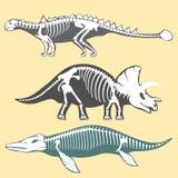 Dinosaurs skeletons silhouettes set fossil bone tyrannosaurus prehistoric animal dino bone vector flat illustration. Stock Photo