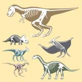 Dinosaurs skeletons silhouettes set fossil bone tyrannosaurus prehistoric animal dino bone vector flat illustration. Royalty Free Stock Photo