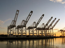 Dinosaurs at Sunset. A group of 6 shipping cranes at the edge of a bay during sunset, raised arms making them look like a herd of brontosaurus& x27 Stock Image