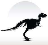 dinosaurs trex skeleton Stock Images